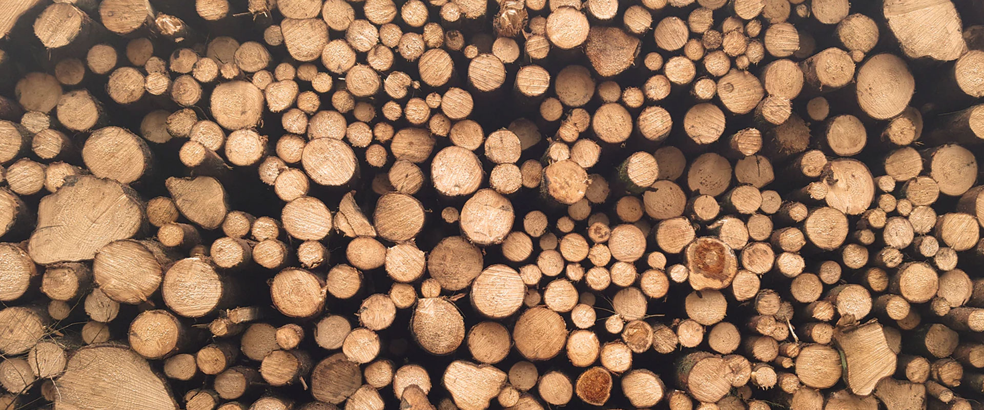 Environmental Tips for Timber Packaging